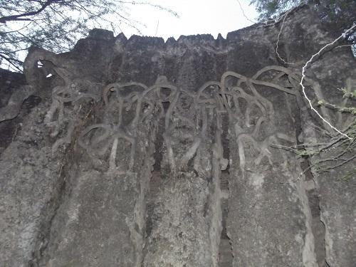 amazing view of rock garden