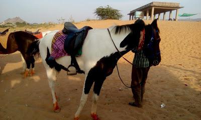 horse riding in pushkar